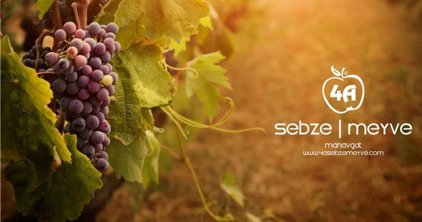 4A Sebze Meyve